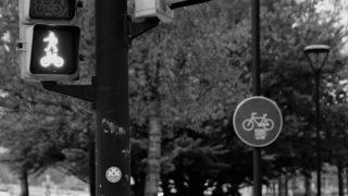 Foto de Javier - MOOC Introducción a la Gestión de la movilidad sostenible - Gratuito Online - 30 Días en Bici